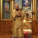 Bishop' N4